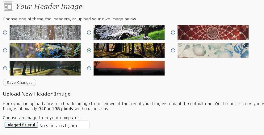 how to change header look in wordpress